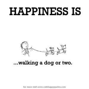 Dog Walking/ Boarding in Bowmanville & Courtice