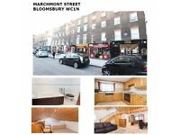 Quirky Studio Apartment Bloomsbury WC1N