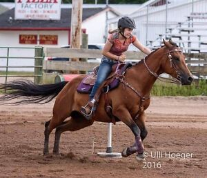 Riding Lesson - 9 openings available
