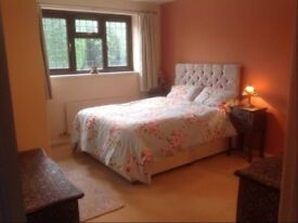👉 Available Double Rooms @ Stratford