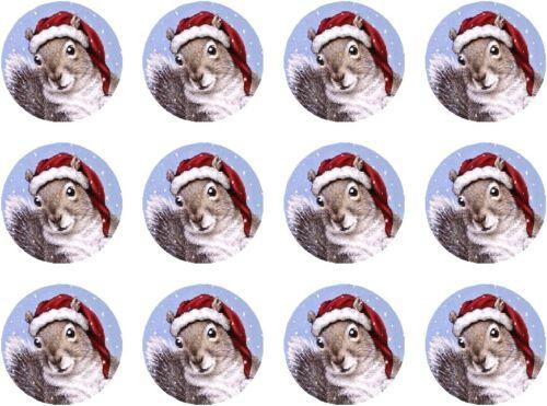 "Christmas Squirrel Stickers envelope seals 1.25"" round perm adhesive wildlife"