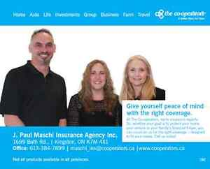 free comparative quote on your auto insurance Kingston Kingston Area image 2