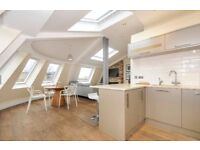 Stylish and Spacious 2 bedroom with Roof Terrace, study room, in Shoreditch High Street,London SAV2B