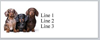 Personalized Address Labels Three Colors Dachshund Dogs Buy3 Get1 Free Jx 254