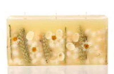 BEACH DAISY Rosy Rings 3-Wick Brick 160 Hour Botanical Scented Candle ()
