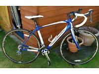Claud butler TORINO SR2 2014 road bike