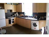 5 Bed to let for students/professionals - spacious house