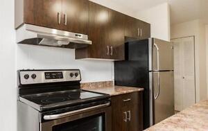FREE RENT - Windsor Park Plaza - Bachelor Apartment for Rent Edmonton Edmonton Area image 1