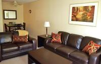 Spacious Fully Furnished Apartments