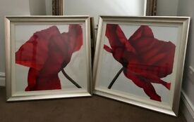 Stunning Framed Poppy Prints