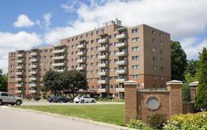 LARGE 2 Bedroom near the Victoria Hospital! Pet Friendly London Ontario image 15