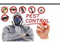 Bed bugs,cocroakes,ants or mices in your house? We are here for you!! Only £40/ room two treatments