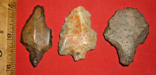 (3) Aterian Early Man Points (30K-100K BP), Prehistoric African Artifacts