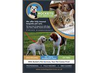 Pet Sitting / Dog walking / Animal Taxi