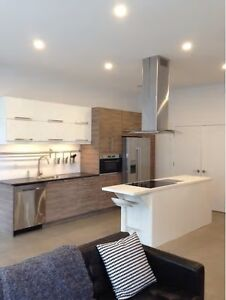 NEWLY BUILT, Fully Furnished Luxury DOWNTOWN Halifax Apartment