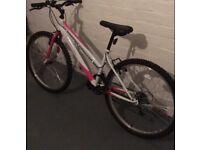 Challenger Regent girls women's teens bike pink and white bicycle.