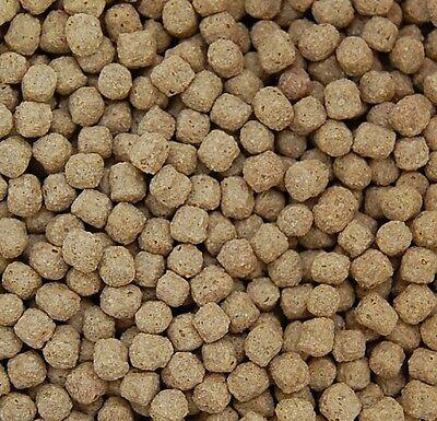 Koifutter 5 kg *Economy XL* Pelletgröße 6 mm Koi Futter Teichfutter Fischfutter