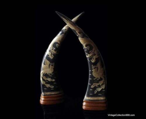 Pair of long water buffalo horns carved with Dragon and Phoenix with wooden base