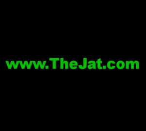 Domain Name 'www.TheJat.com' For Sale $175,000