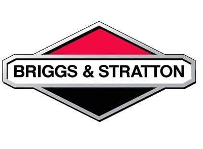 691105 Genuine New Old Stock Briggs And Stratton Hex Nut