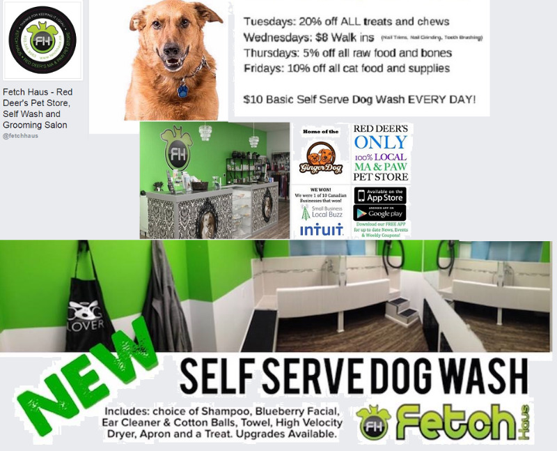 Fetch haus red deers pet store self wash and grooming salon description solutioingenieria Images