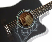 """Gibson/Epiphone """"Jane"""" Acoustic/Electric -- Dave Navarro"""