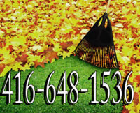 Fall Clean-up☎ 4166481536