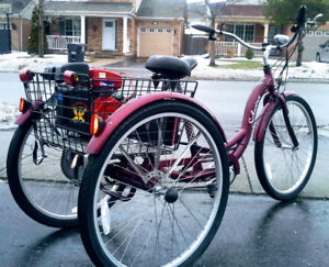 Predator Gas Engine Bicycles & Tricycles  - $850 & up