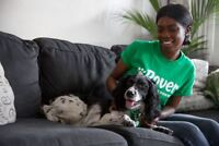 Become a Rover Dog Sitter - Work from Home