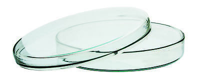 6.5 Petri Dish - Premium Borosilicate Glass - .75 Depth - Eisco Labs