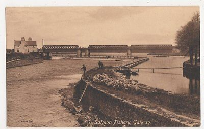 Ireland, Salmon Fishery, Galway Postcard, B407