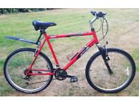 Raleigh mountain bike large.