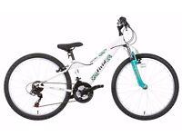 """Apollo Vivid Girls Mountain Bike - 24"""" + Free lock"""