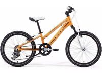 "FREE Lights (2657) 20"" Lightweight Aluminium MERIDA KIDS MOUNTAIN BIKE BICYCLE; Age: 6-9, 120-135 cm"