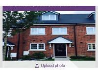 3 bed house in Wickford looking for 3/4 bed house