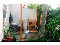 Aviary . Aviary panels