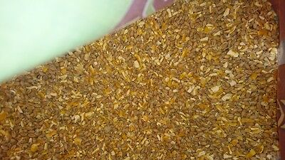 Chicken Feed Mixed Corn 1KG - Poultry Ducks Pheasants - By United Farmers