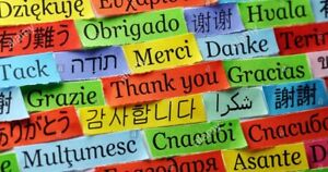 Translation/Translator Services 24 Hour Turnaround
