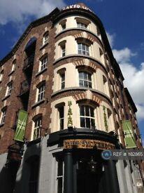 Studio flat in Rainford Gardens, Liverpool, L2 (#1182865)