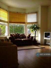 Studio flat in Wimbledon, Wimbledon, SW20