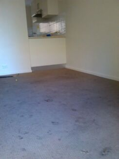 Carpet / Upholstery Cleaning and pest control.