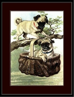 Picture Print Pug Dog Puppy Duo Basket  Art