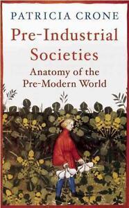 Pre-Industrial Societies von Patricia Crone (2015, Gebunden)