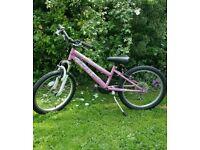 "Girl's Pink 20"" Bike VGC"