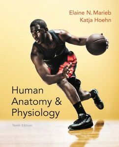 Anatomy and Physiology 10th Ed Textbook