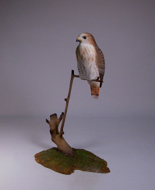 Red-tailed Hawk Original Wood Bird  Carving/Birdhug