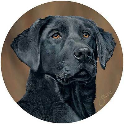 Black Lab Coaster Set of 4 Round Dolomite Heat & Water Resistant Cork Backing  - Lab Coaster Set