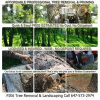 ✔Tree, Stump, Bush & Hedge Removal- Get It Done Today ✔GTA