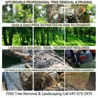 Fallen Tree Cut Up, Removal & Disposal- FREE ESTIMATE ✔Same Day