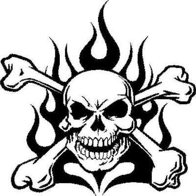 Skull and Flames vinyl decal/sticker truck car jeep window race fire crossbones - Skull And Crossbones Stickers